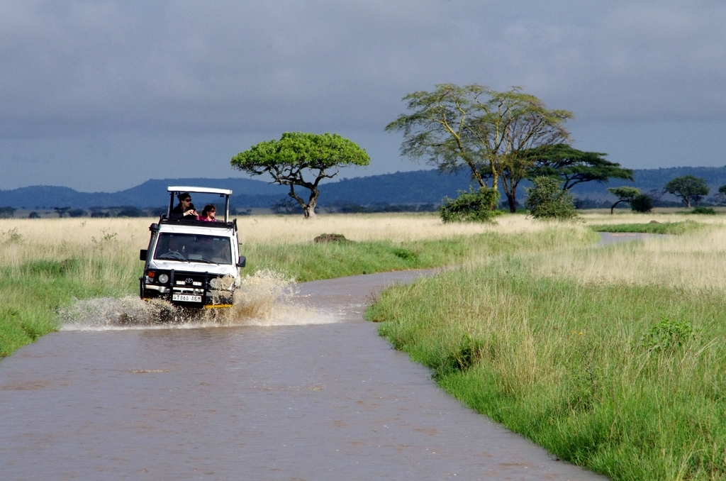 Avec la mousson, les pistes deviennent rivières - Serengeti