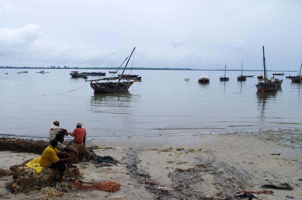 Comme d'un autre temps, plus mélancolique - Zanzibar