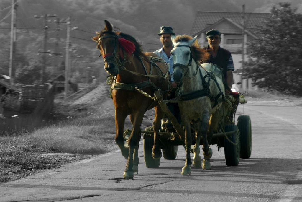 Sur la route, Roumanie