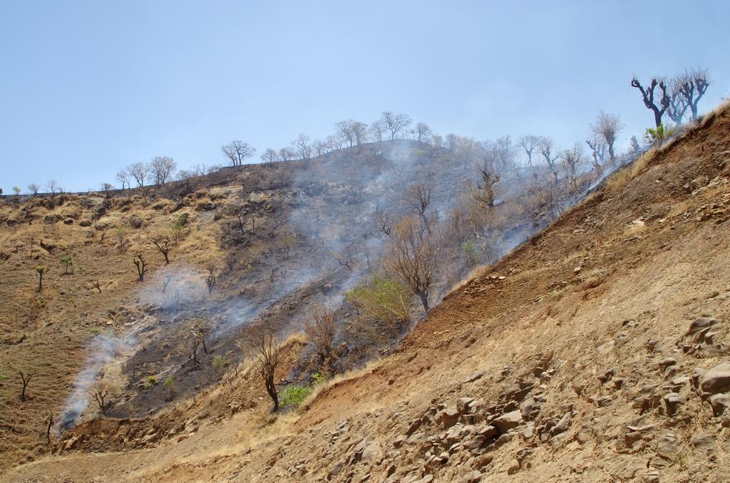 La technique du brûlis reste fortement employée dans le pays. En 50 ans, le pays a perdu 98 % de ses forêts.