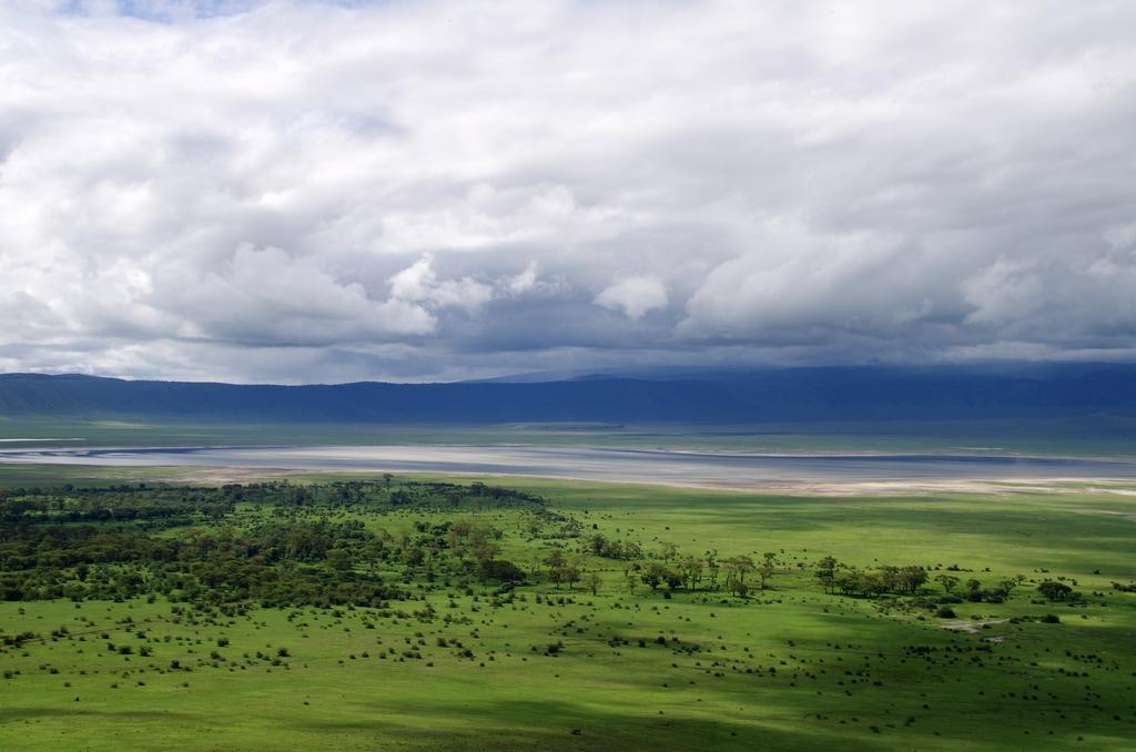 """Le cratère du Ngorongo est une caldera de plus de 20 km de diamètre. C'est l'un des rares endroits où il est encore possible d'observer les """"Big five"""", les 5 mammifères emblématiques de l'Afrique décris par Hémingway dans les Neiges du Kilimandjaro - Tanzanie"""