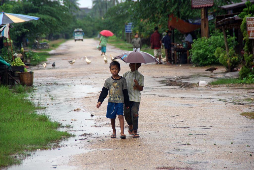 Après la pluie, Champasak, Laos