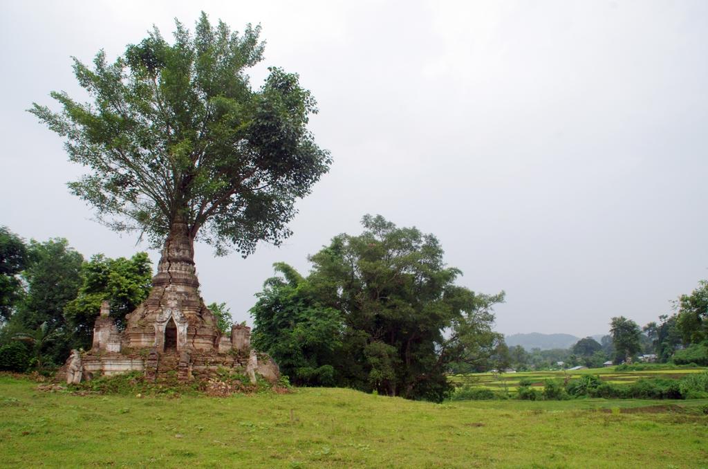 Old Bagan - Hipsaw