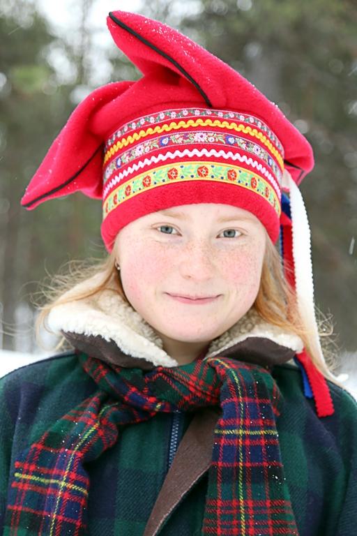 Sámi, Finlande