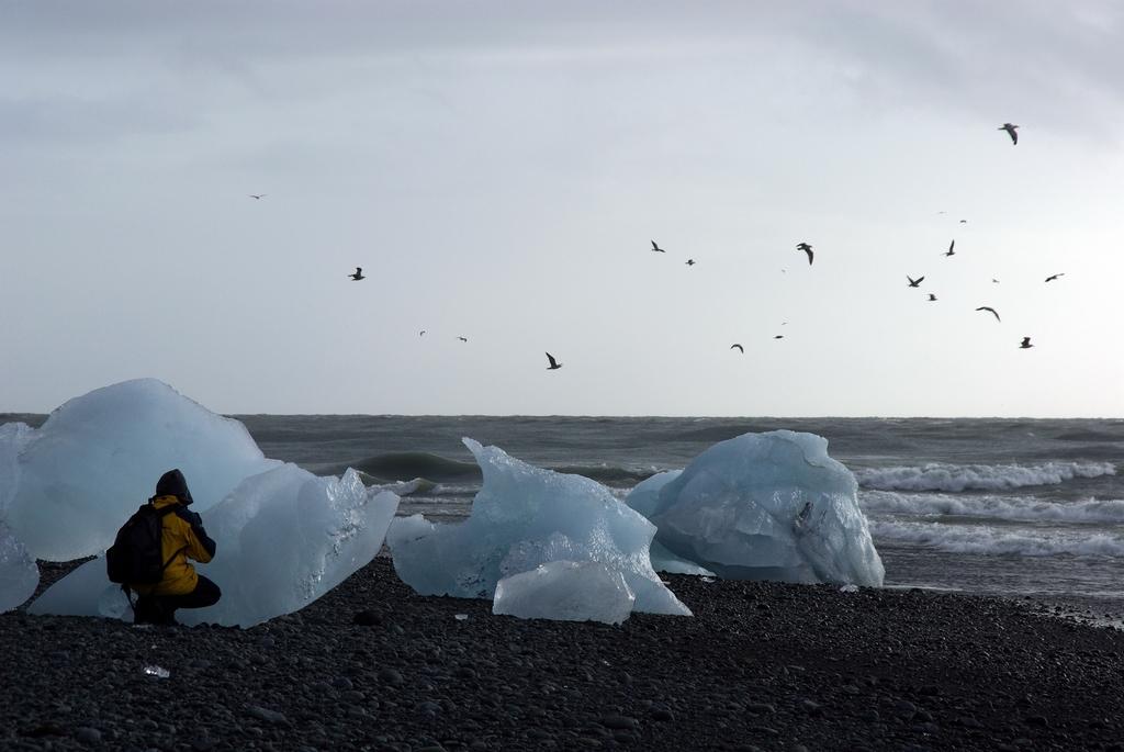 Confrontation de la glace et de la mer, sous le regard du grand Labbe