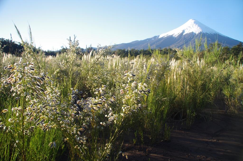 Patagonie - Chili
