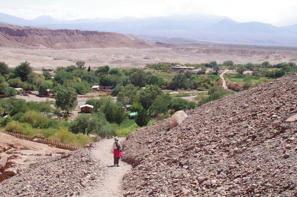 Environs de San Pedro de Atacama - Chili