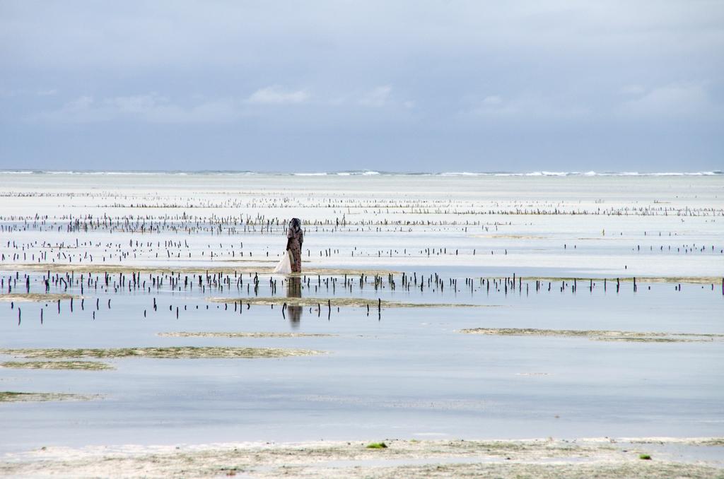 Bwejuu - Zanzibar
