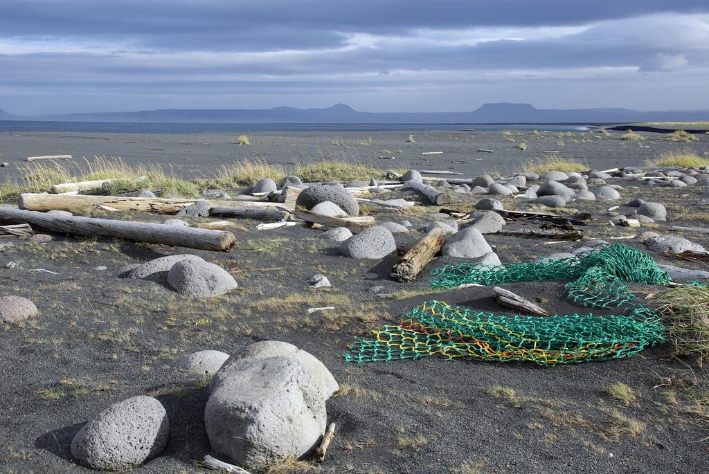 Plage sur l'océan Arctique - Islande