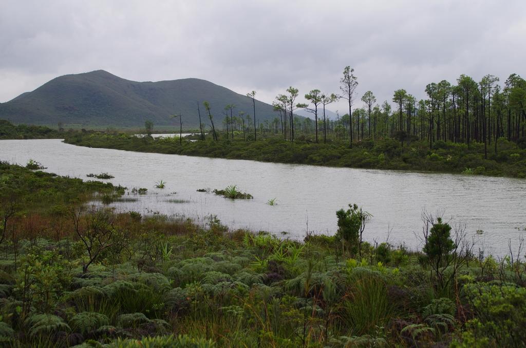 Un paysage à la Jurassique Parc - Nouvelle-Calédonie