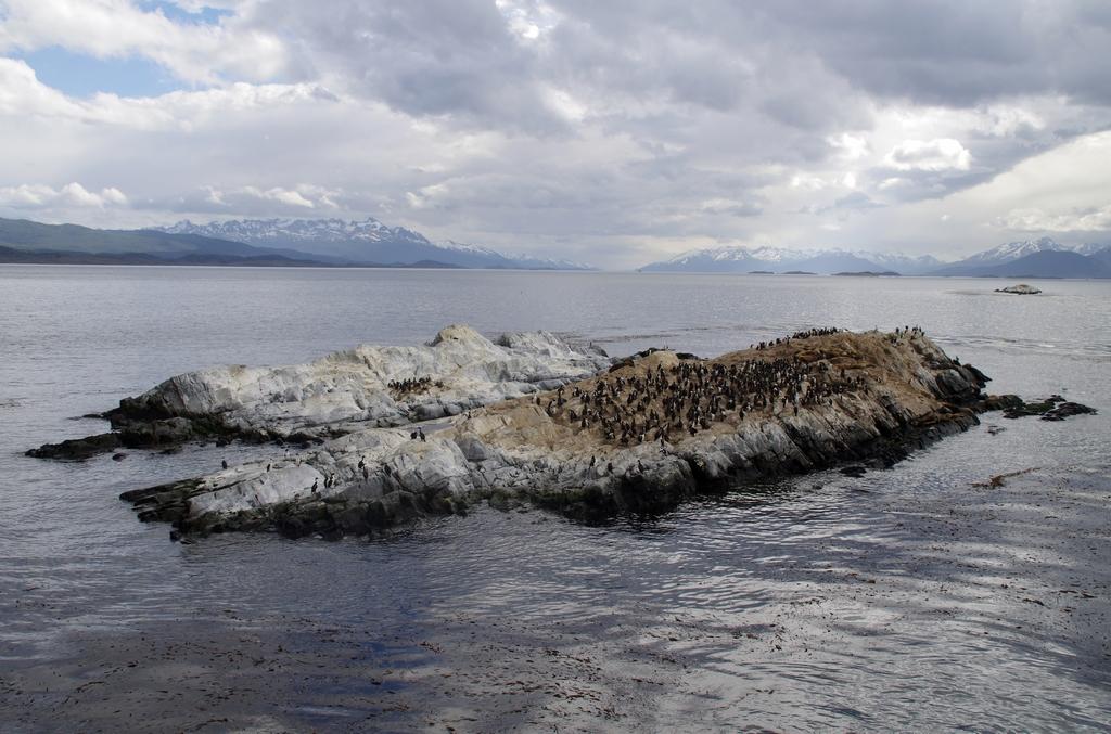 Paysage de bout du monde - Terre de feu, Argentine