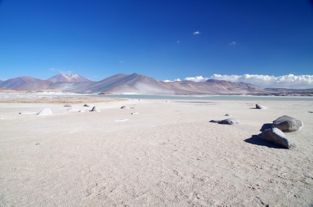 Salar de Talar - Chili