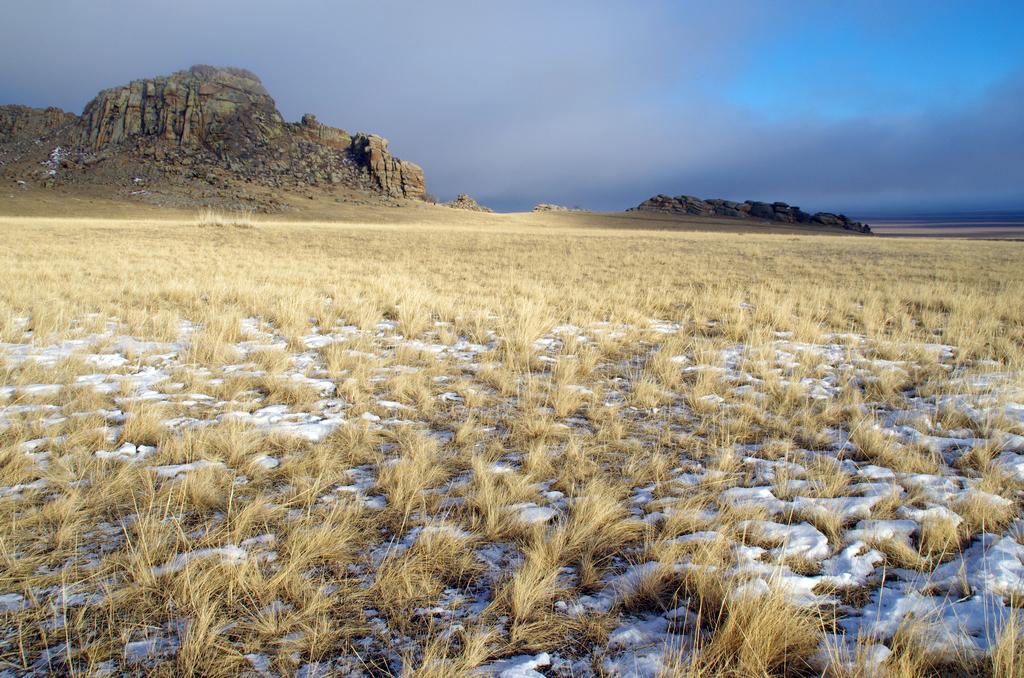 Fin de journée sur les steppes - Mongolie