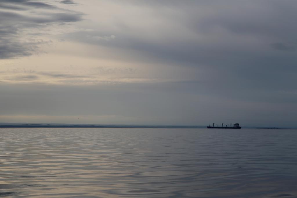 Le St Laurent présente une faune d'exception. Il faut pourtant faire avec un traffic maritime important - Québec