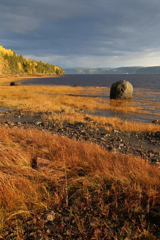 Aux alentours du lac St Jean - Québec