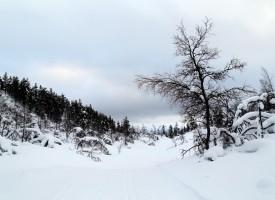 Laponie et Cap Nord