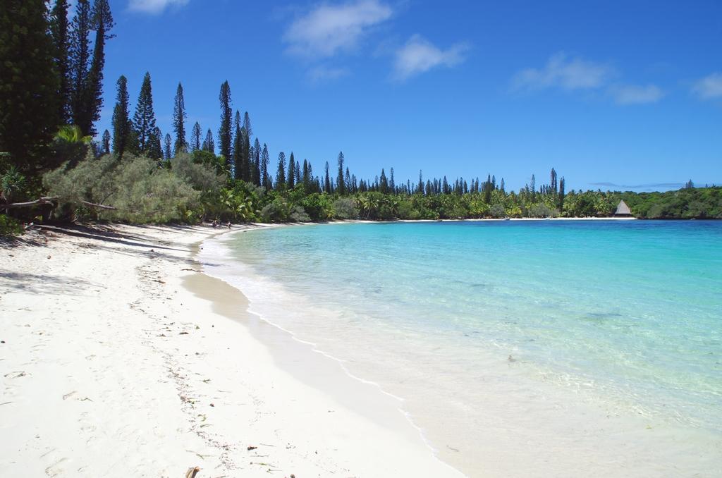 L' île des pins est une pure merveille