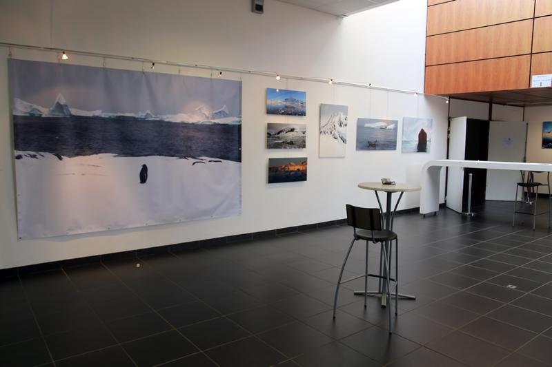 Exposition Antarctique, espace Keraudy, Plougonvelin