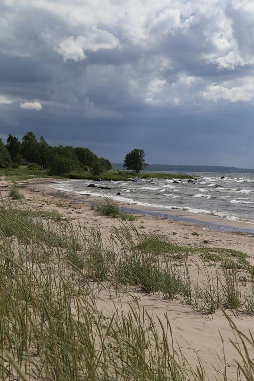 Environs de Talinn - Estonie