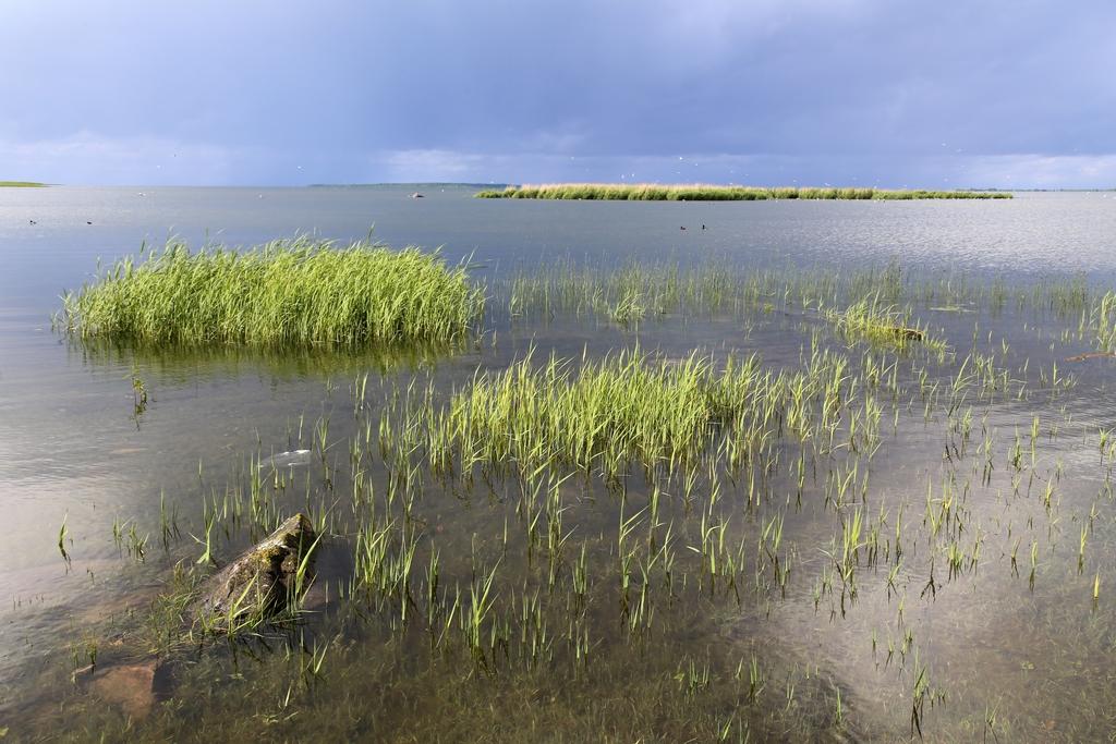Saaremaa - Estonie