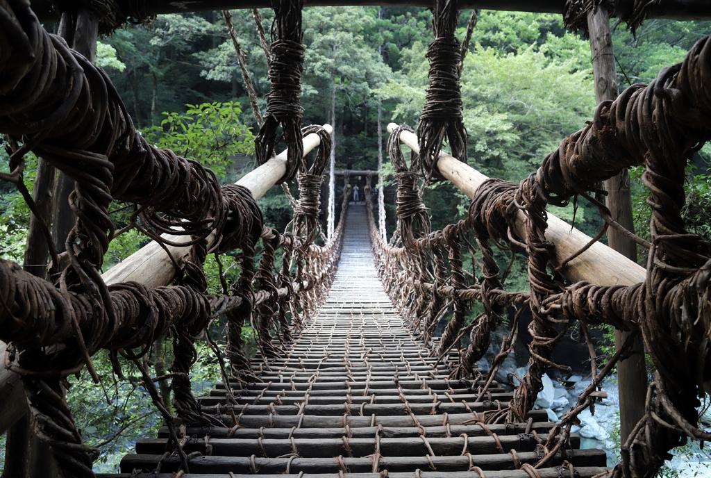 Pont de liane de Shikoku