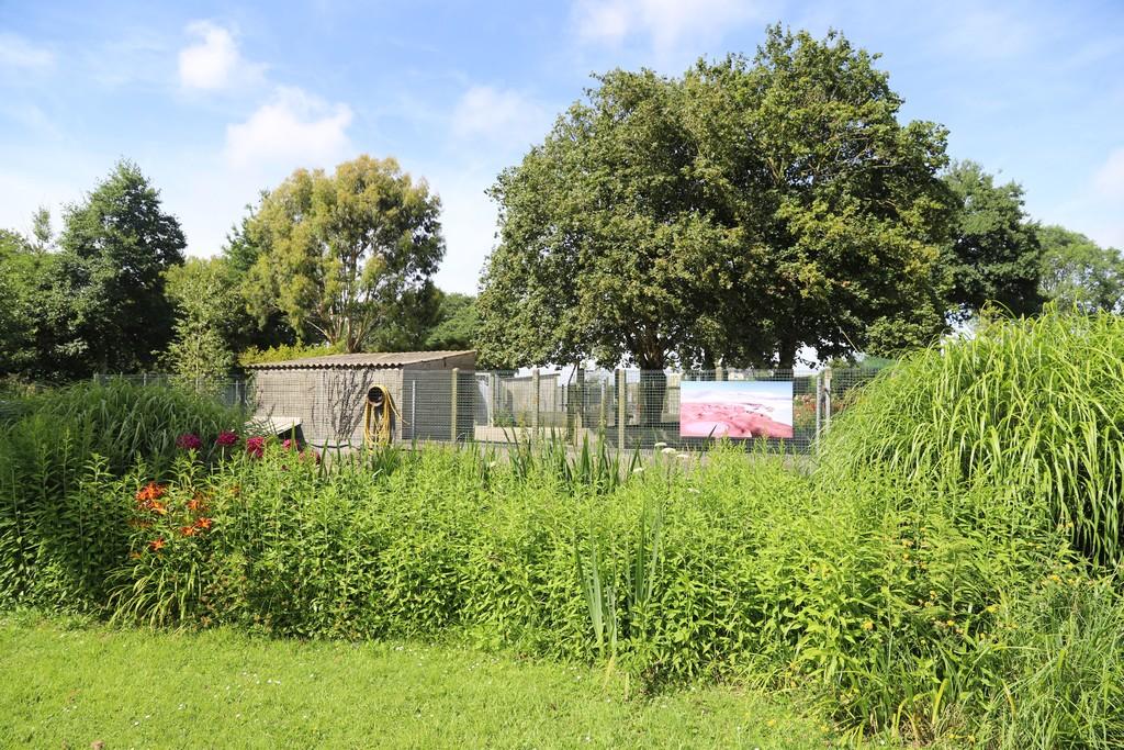 2019: «Paysages insolites», jardin du Moulin Neuf, Ploudalmézeau