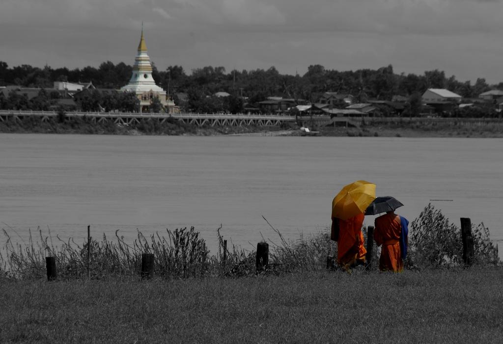 Moines devant le Mékong, Laos