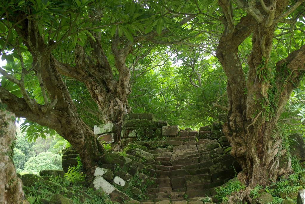 Un escalier digne d'un film d'Indiana Jones, Vat Phu Champasak, Laos