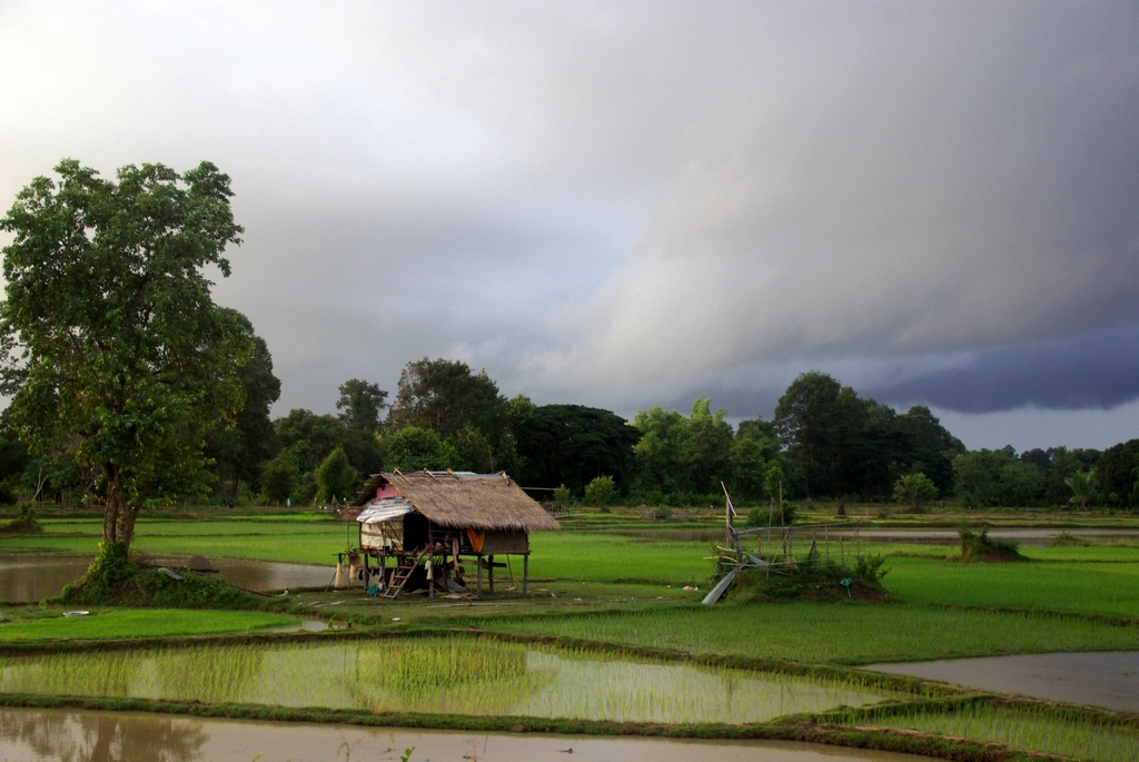 4000 îles, Laos