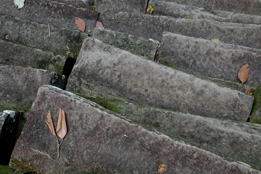 Escaliers, Angkor Thom, Cambodge