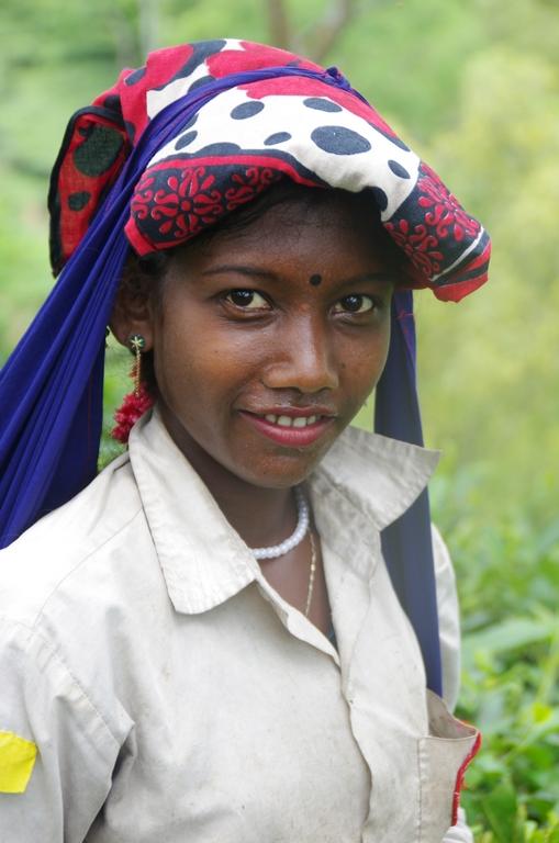 Cueilleuse de thé - Bangladesh