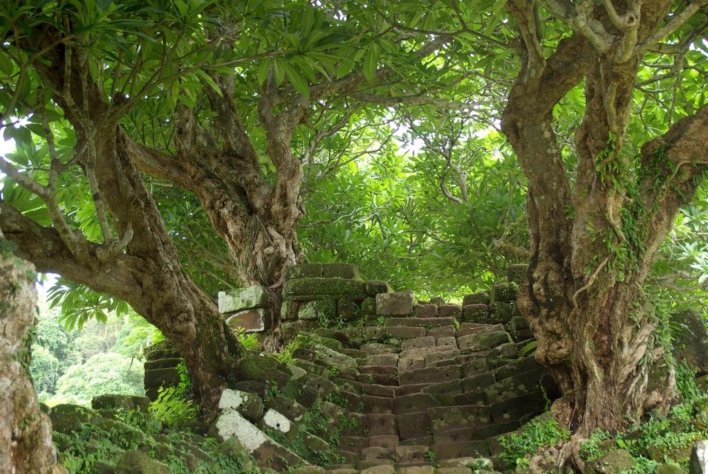 Une entrée de temple digne d'un film d'Indiana Jones - Vat Phu Champasak, Laos