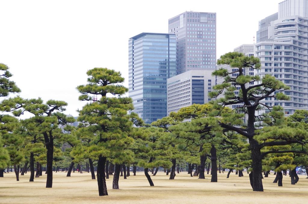 Centre de Tokyo - Japon