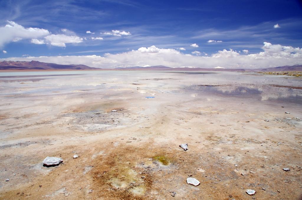 Lac dans l'Altiplano - Bolivie