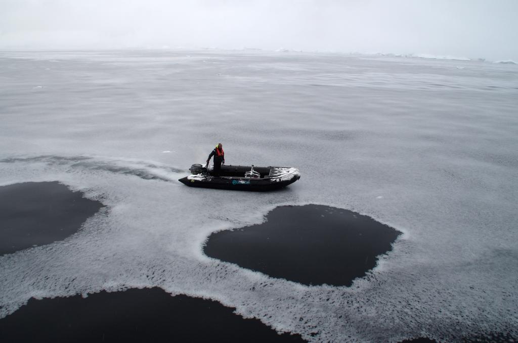 La mer de glace se forme. D'ici quelques jours, la surface sera complétement gelée - Antarctique