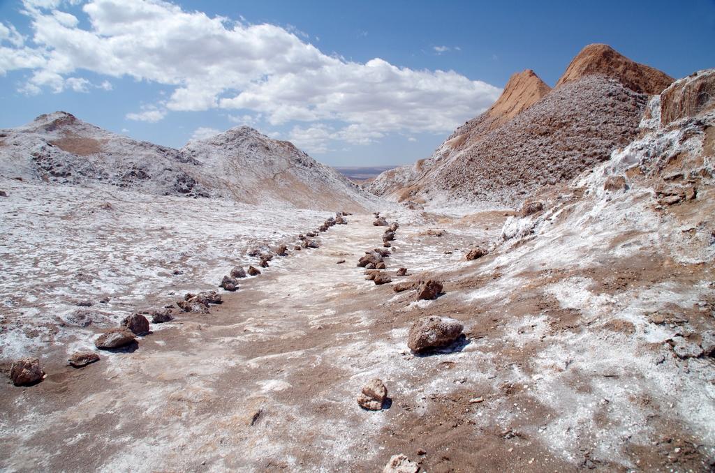 Après la pluie, le sel ressort du sol - Vallée de la Lune, Chili