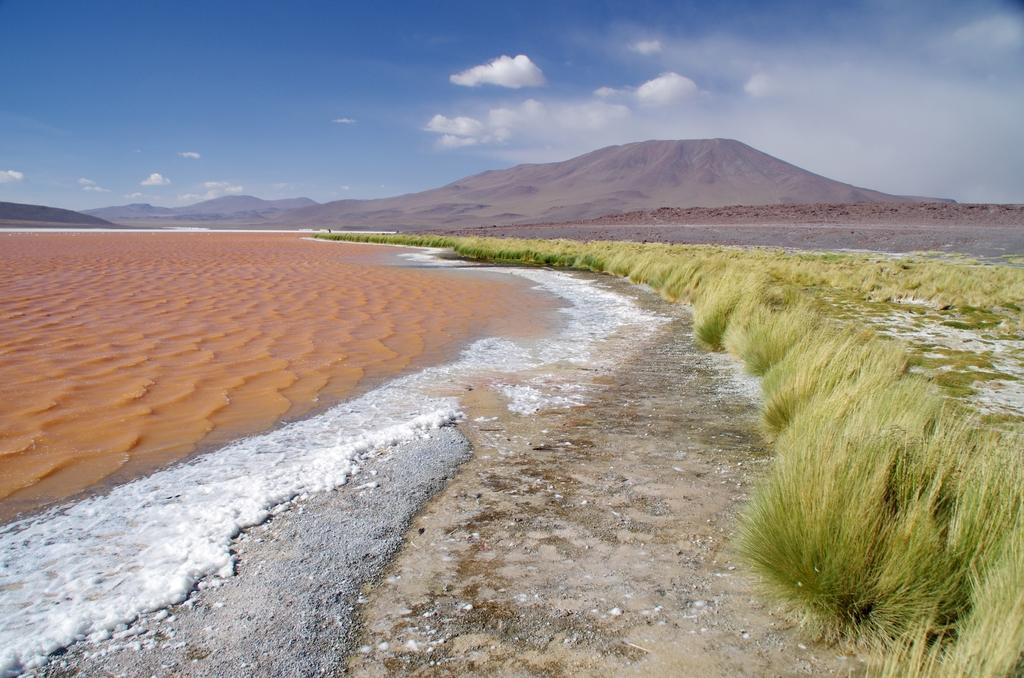 Lac rose - Altiplano, Bolivie