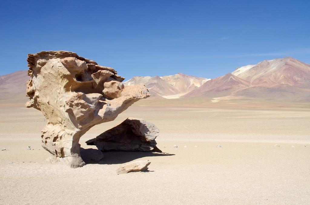 Arbre de pierre - Altiplano, Bolivie