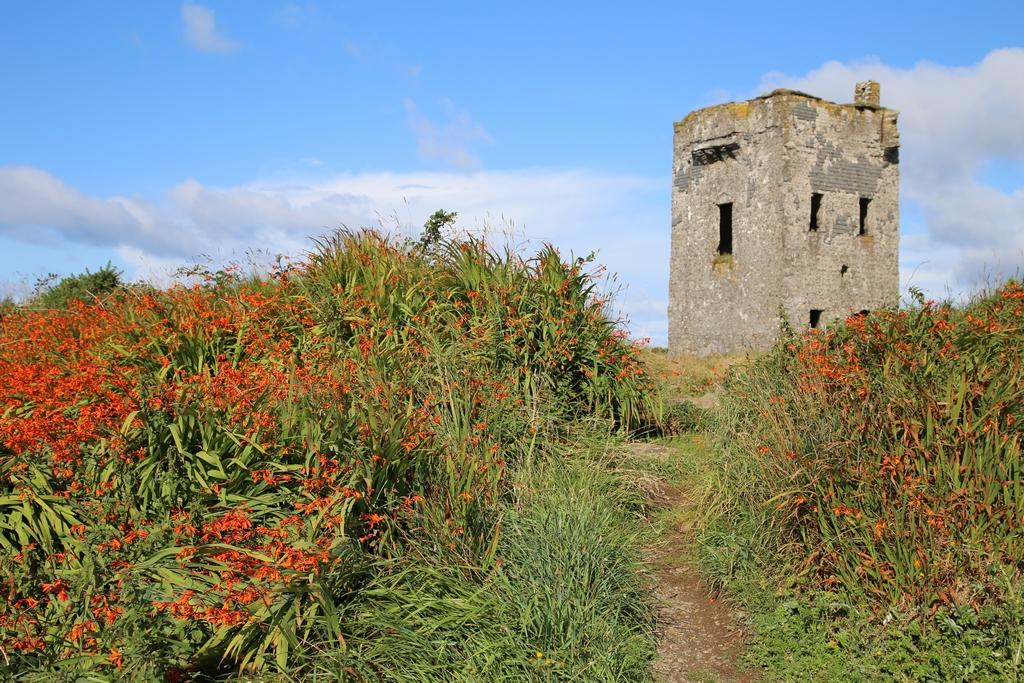 Pointe de Kinsale - Irlande
