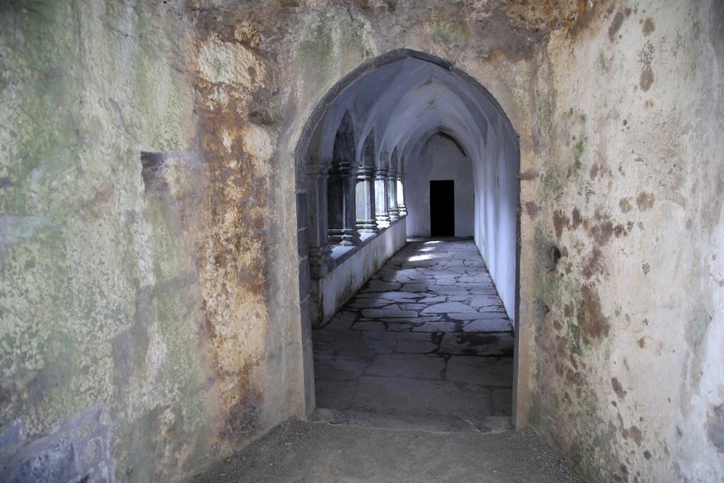 Ancienne abbaye, Killarney - Irlande