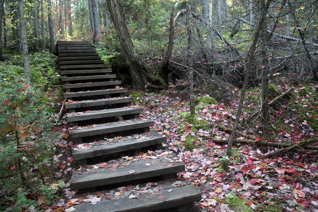 Parc de la Mauricie - Québec