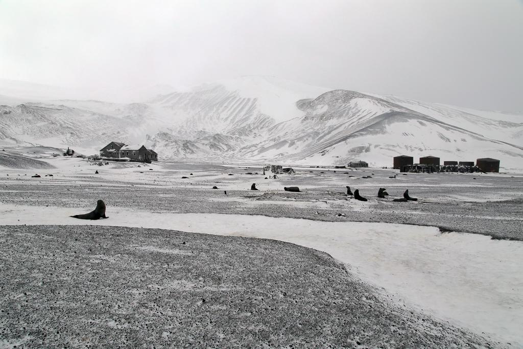 Un paysage proche du noir et blanc - Ile de la Déception