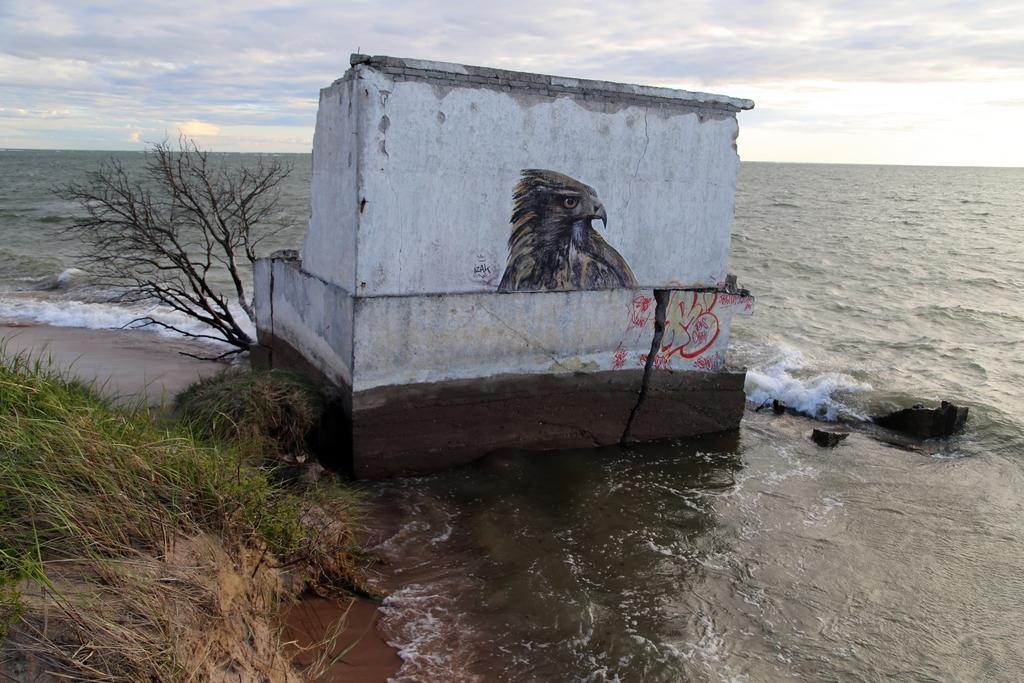 Erosion du littoral, Saaremaa - Estonie